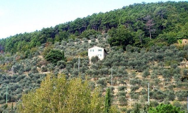 Country home for sale Calci