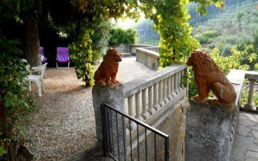 i leoni in cotto