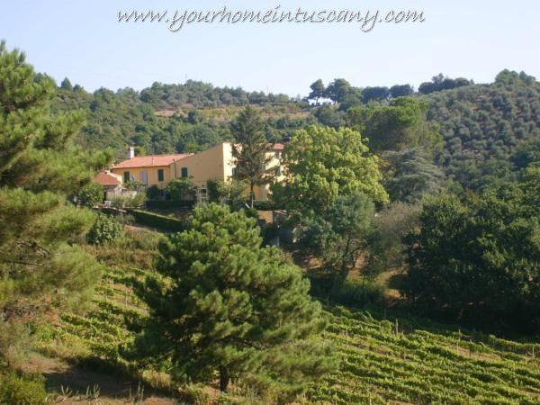 farmhouse for sale vecchiano-tuscany