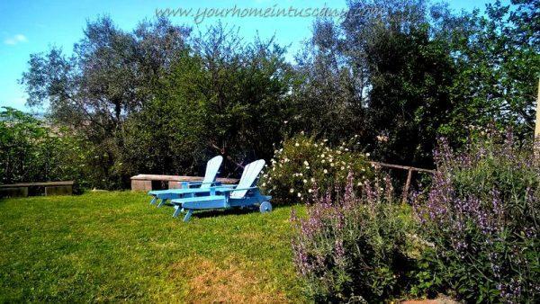 un angolo del giardino con piante aromatiche